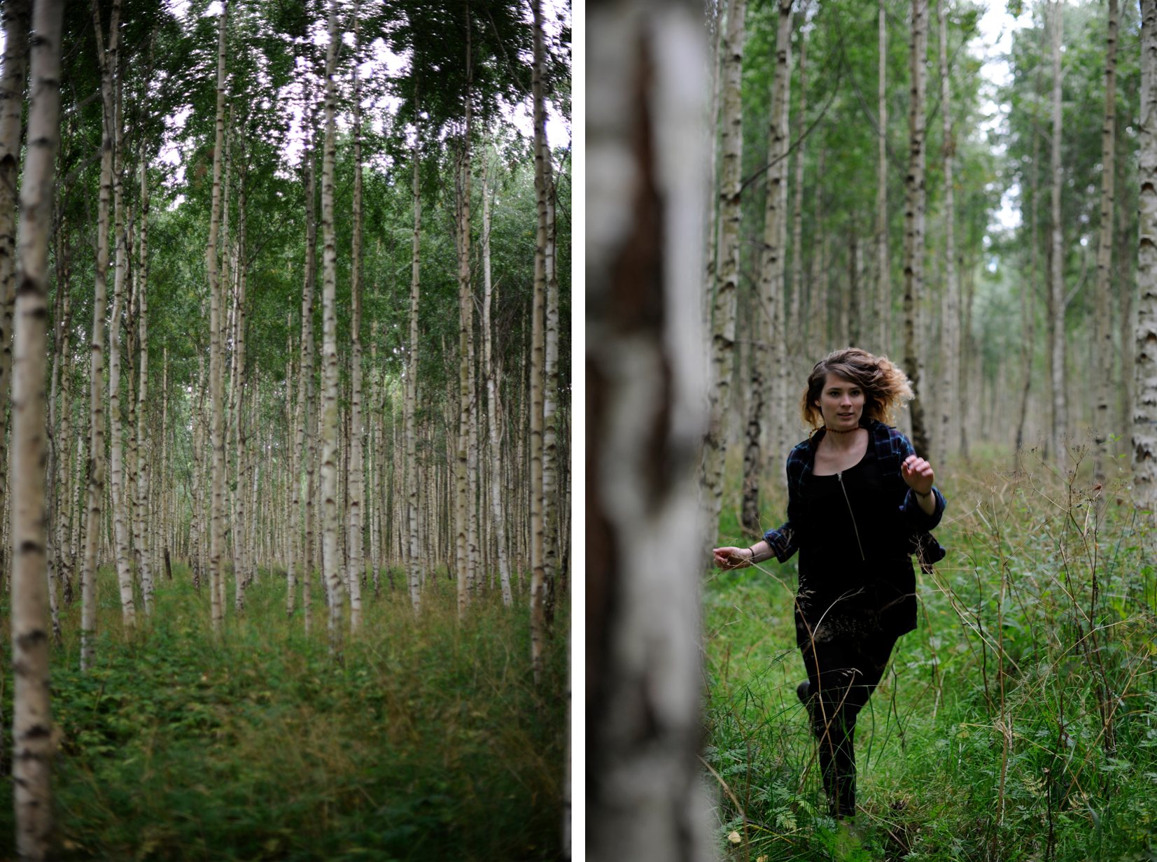 maybeyoulike_sweden_forest3