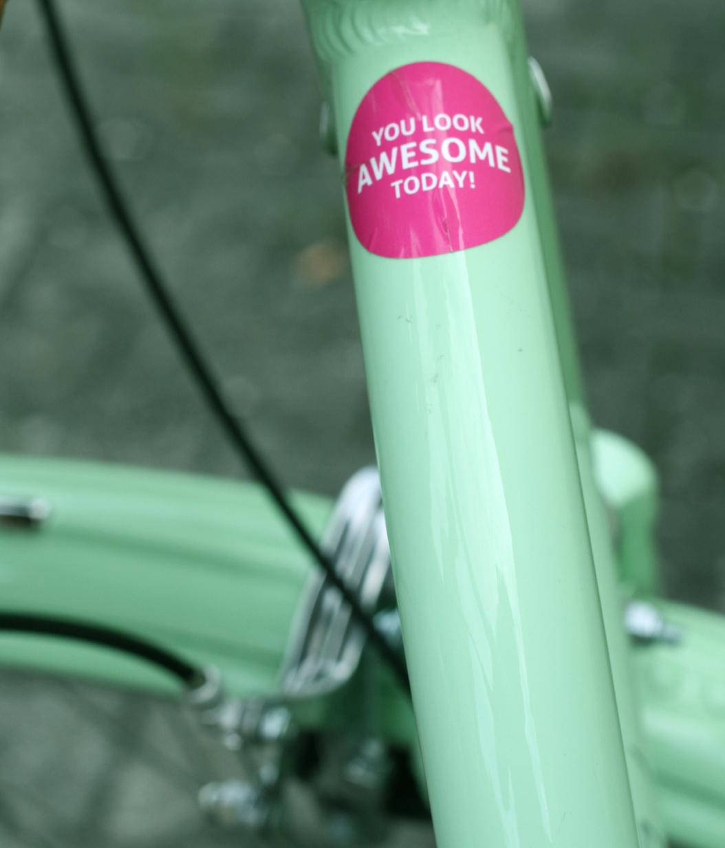 maybeyoulike_electra_amsterdam_bike_2
