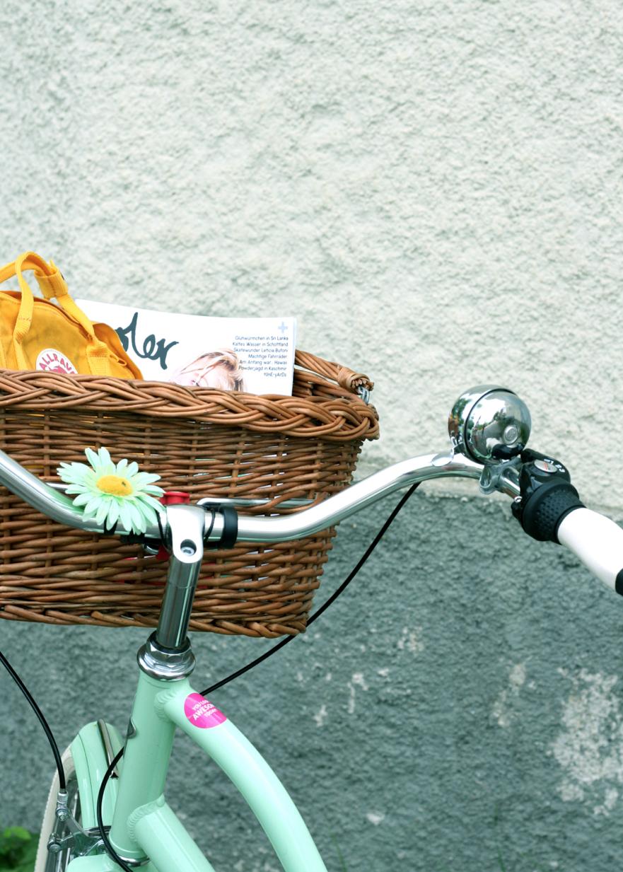 maybeyoulike_electra_amsterdam_bike_6