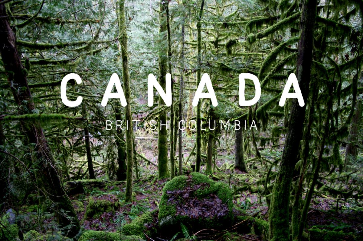 Canada, I love you!