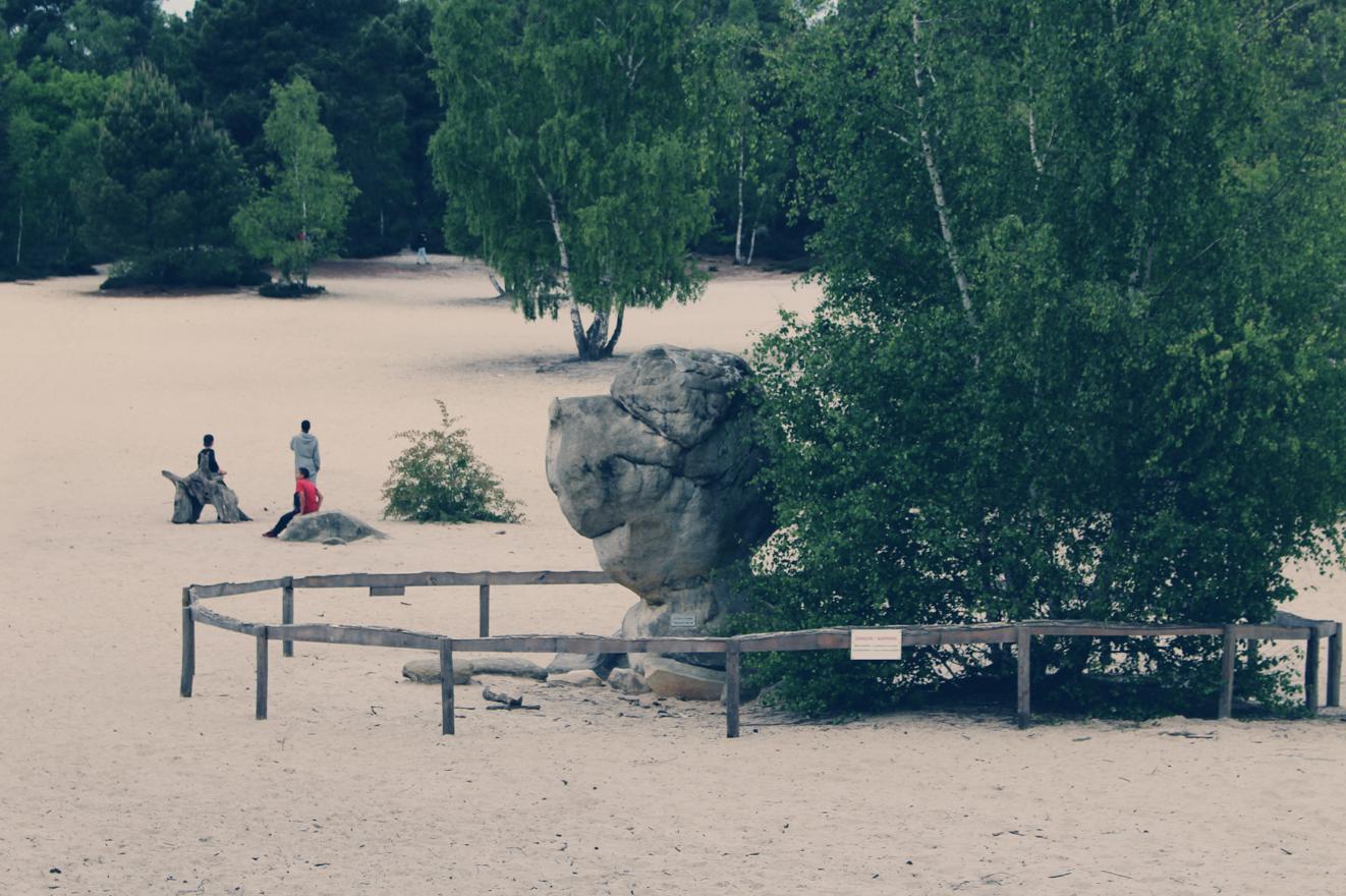 maybeyoulike_Fontainebleau_bouldering9