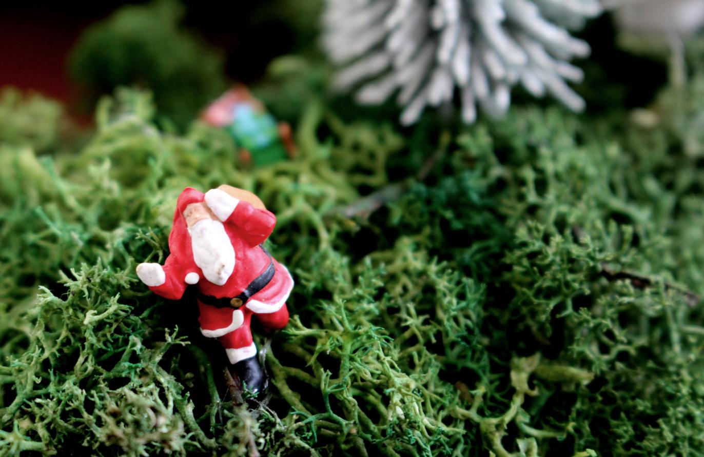 maybeyoulike_Noch_Christmas_12