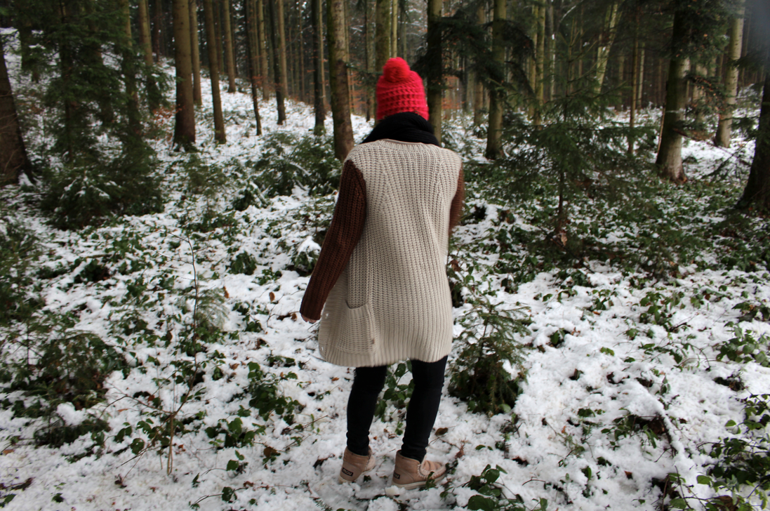 maybeyoulike_Burton_forest8