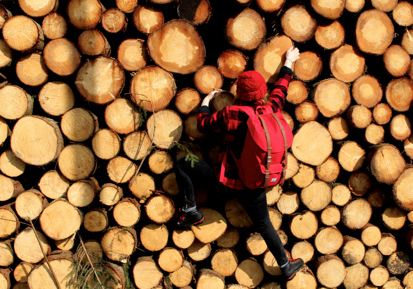 maybeyoulike_lumberjack_woods4