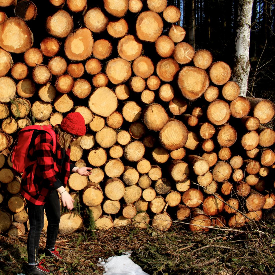maybeyoulike_lumberjack_woods6