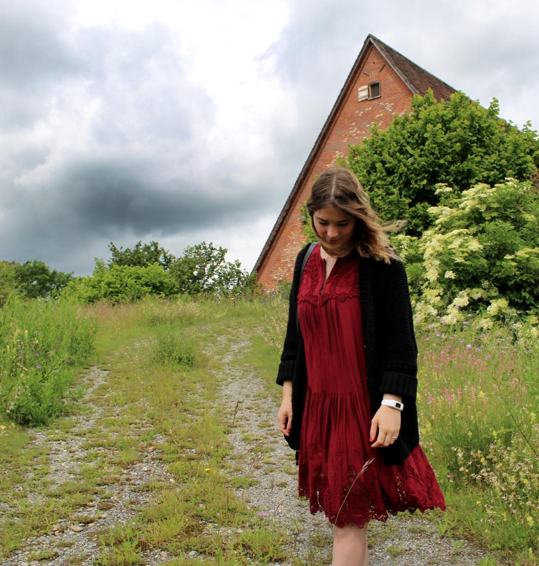 maybeyoulike_hallhuber_dress_6