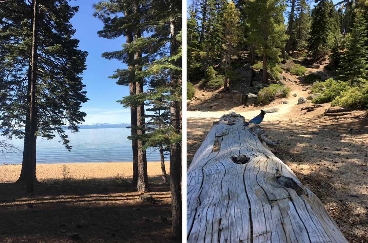 maybeyoulike_lake_Tahoe_5