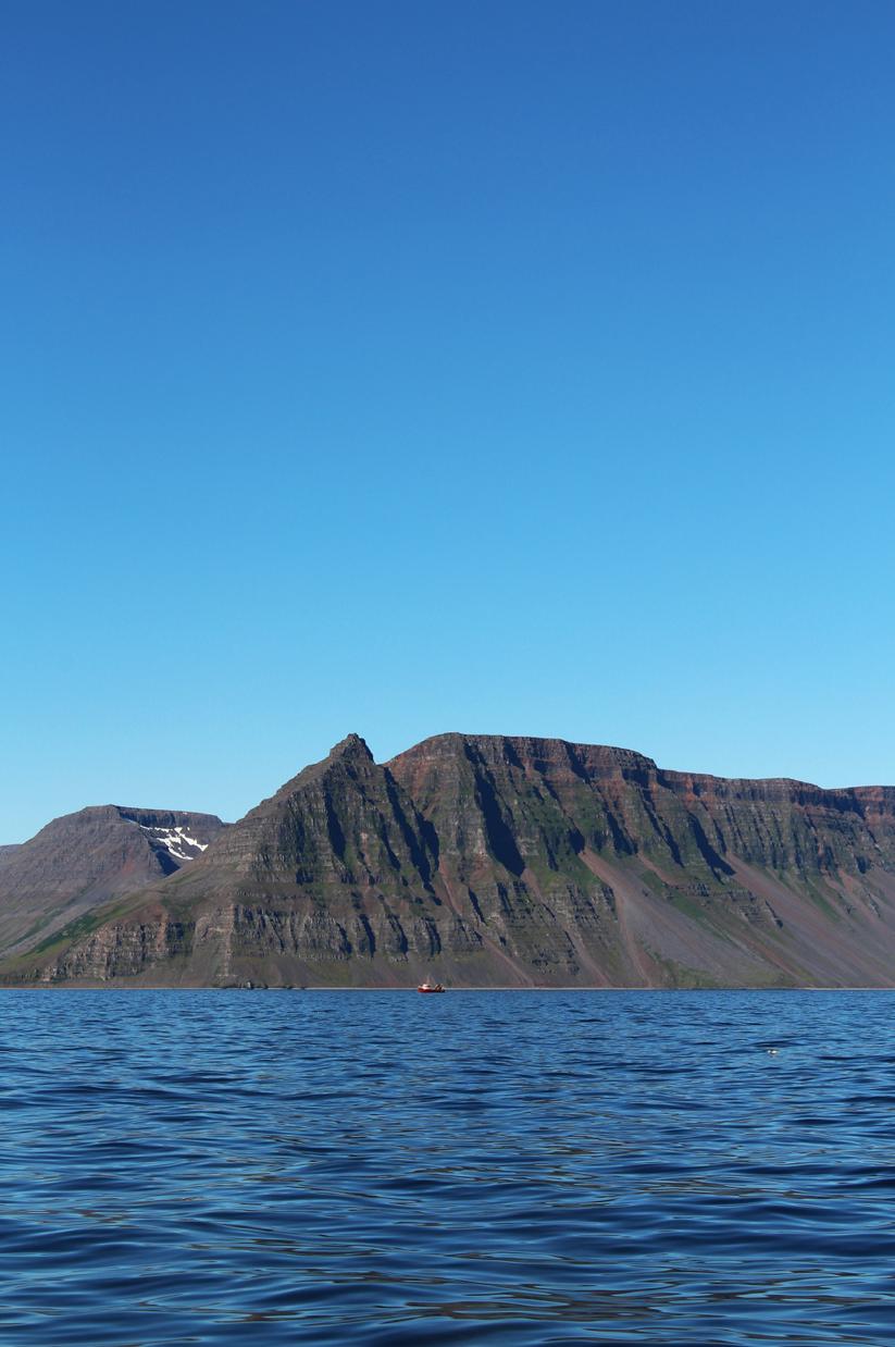 maybeyoulike_Iceland–Westfjords19