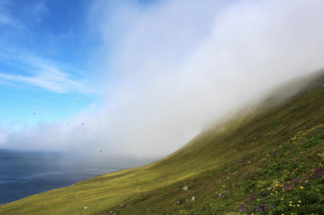 maybeyoulike_Iceland–Westfjords29
