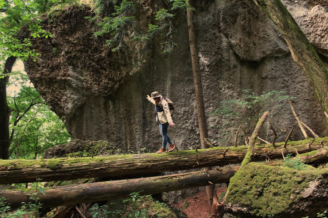 maybeyoulike_Burton_into_the_woods_5
