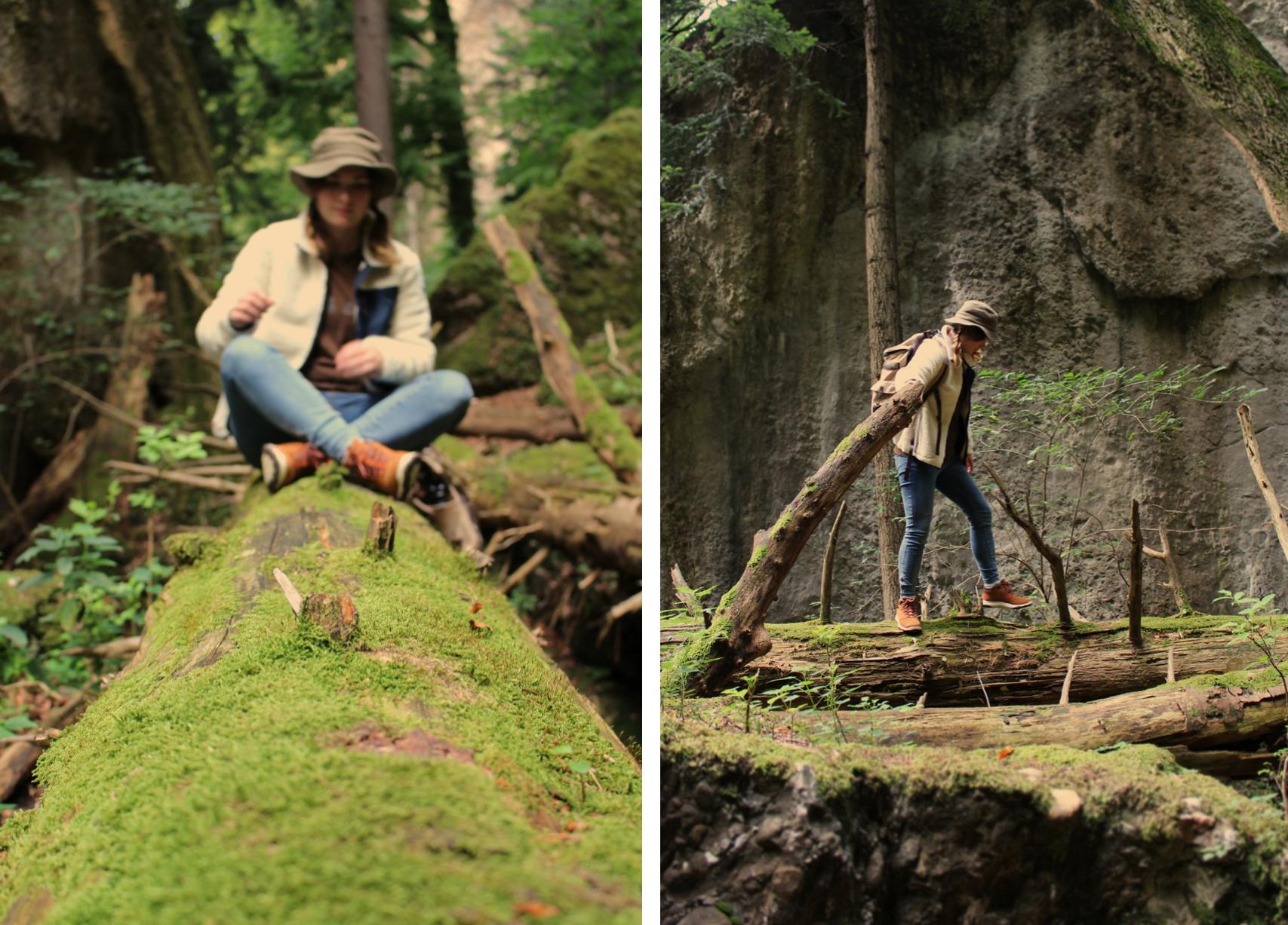 maybeyoulike_Burton_into_the_woods_7