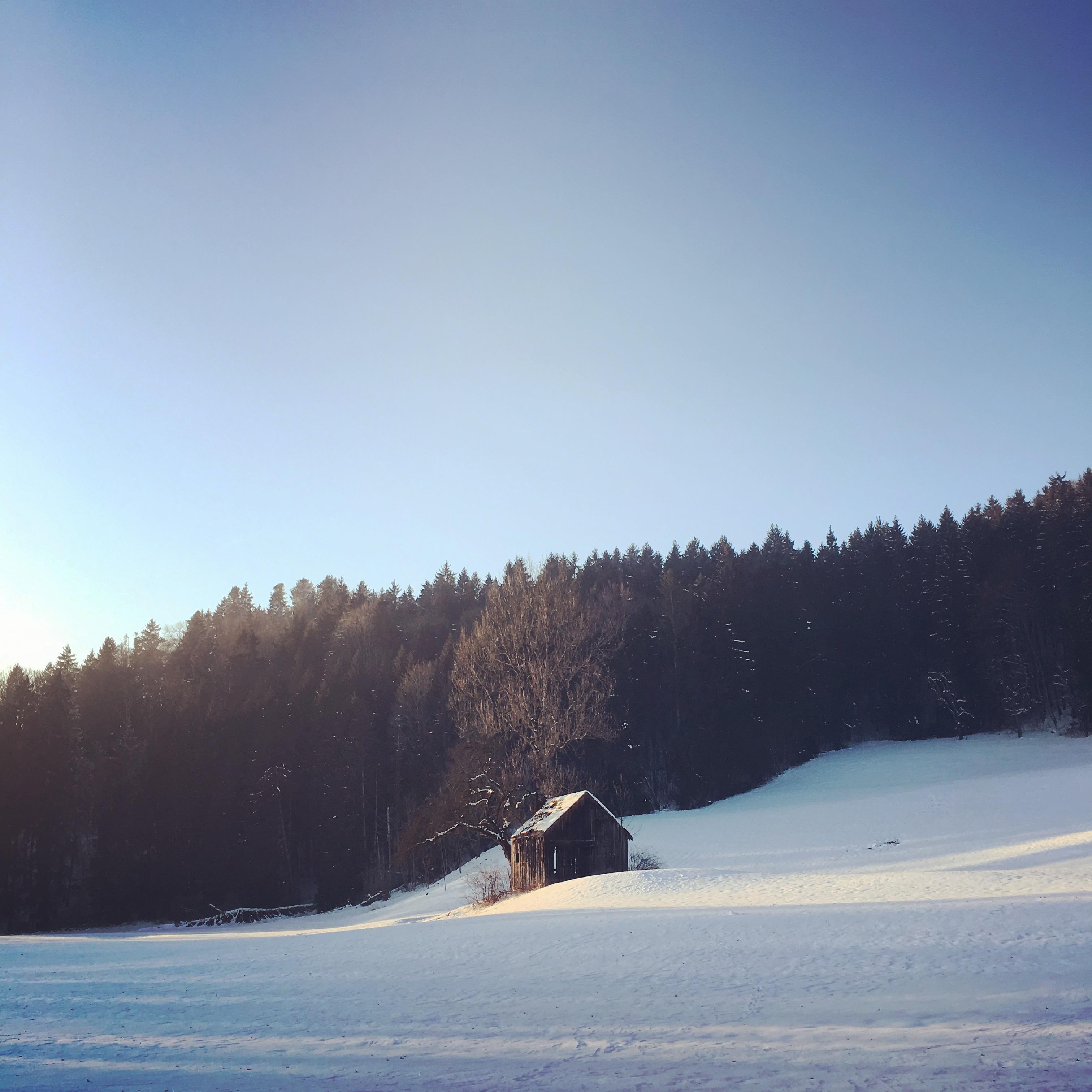 maybeyoulike_weeekendvibes_winter_2