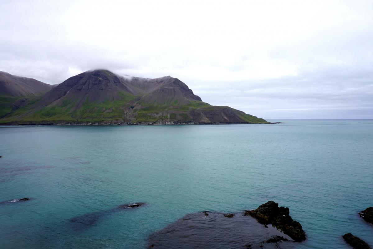 Around Iceland – Puffins in borgarfjördur eystri