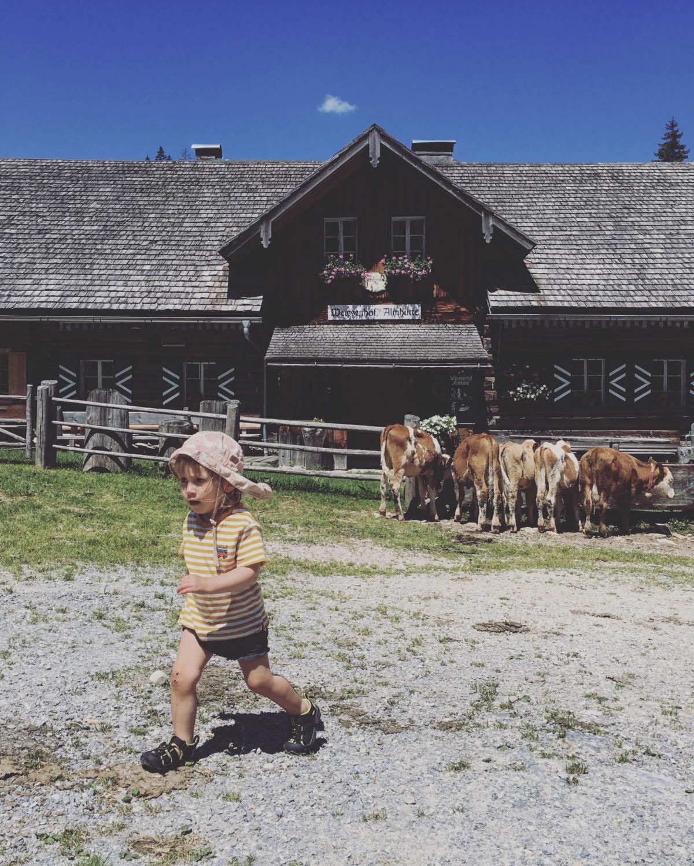 Bloghütte – Salzburger Sportwelt 1