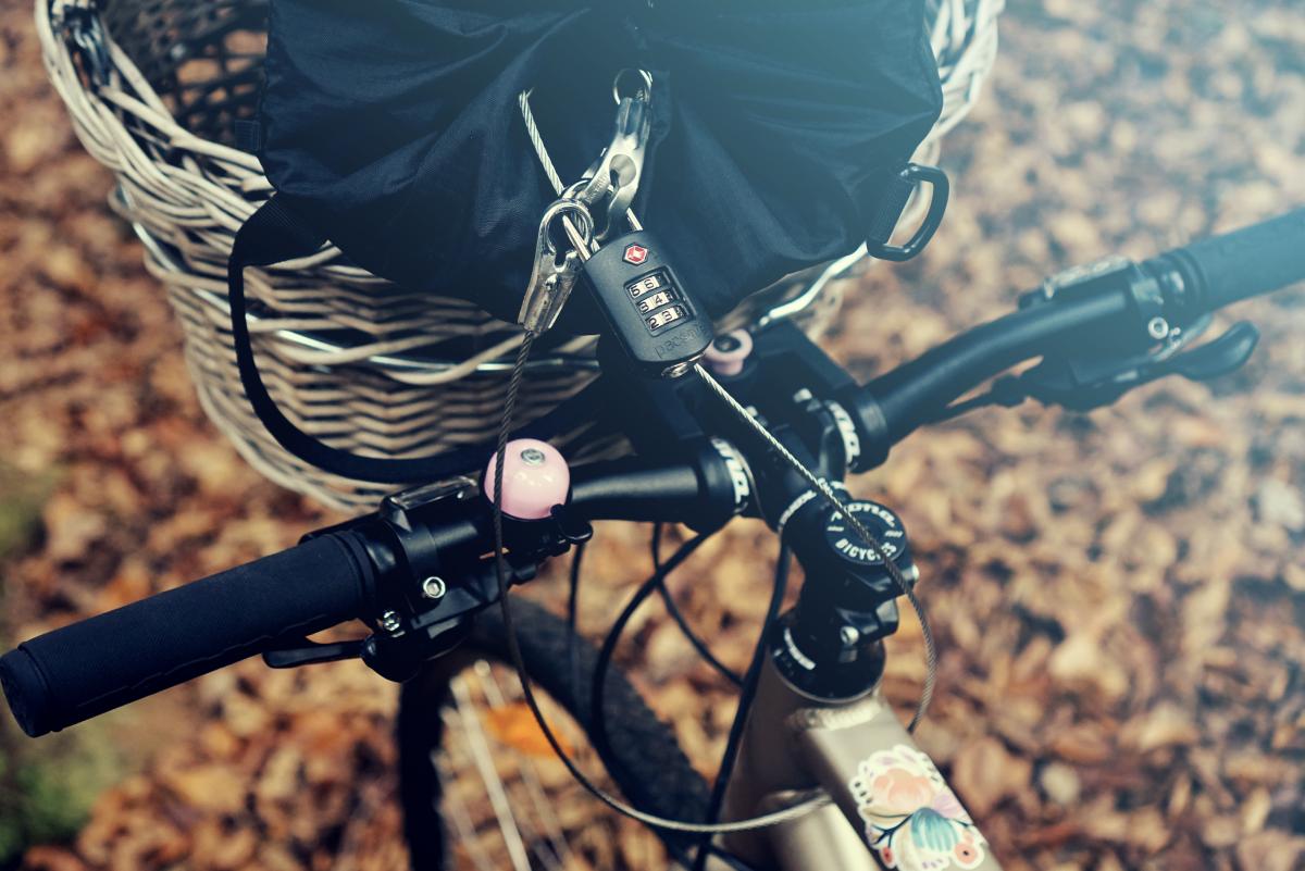 Biking around with PacSafe